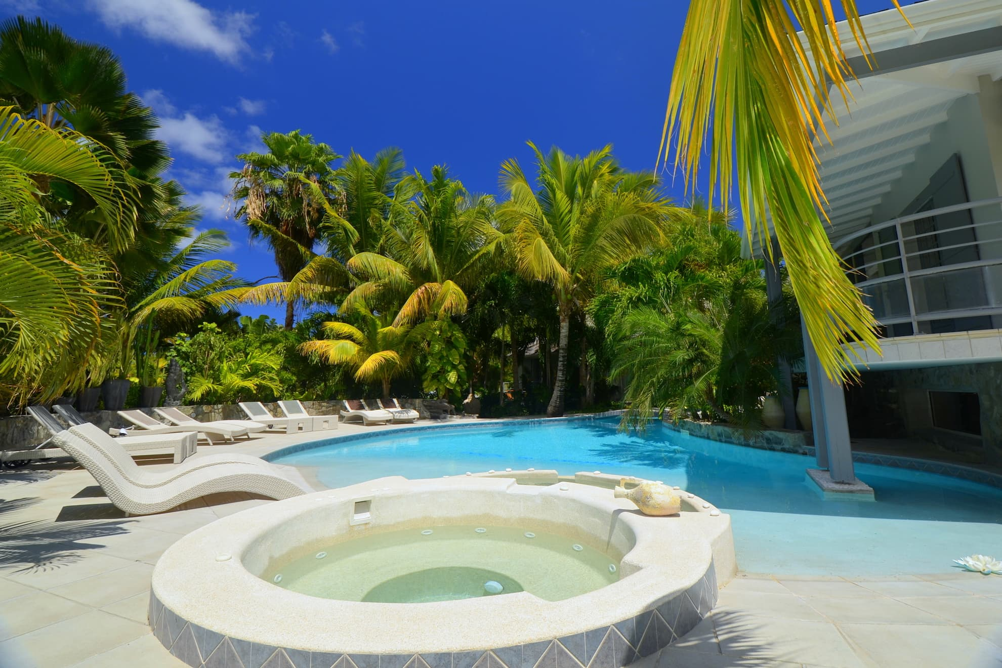 Jacuzzi and swimming pool in the heart of the tropical garden