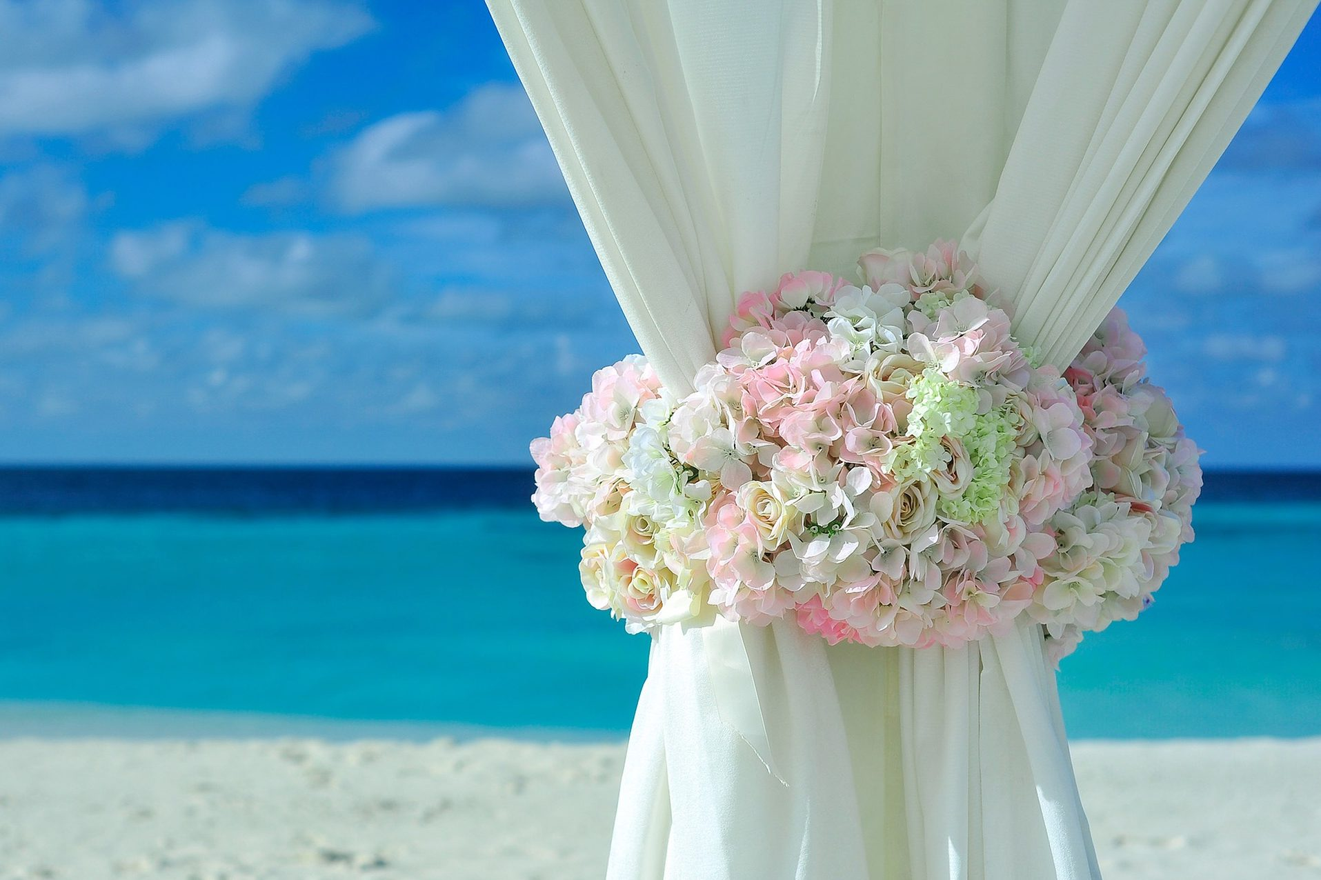 Wedding decoration on the beach / Décoration de mariage sur la plage / Roses & Hortensia / Hydrangea & Roses